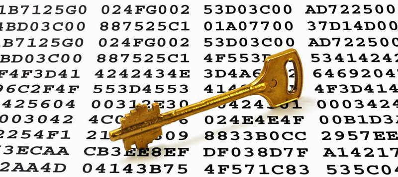 Diffie-Hellman public key